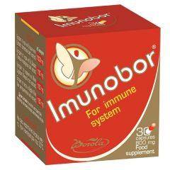 Borola Imunobor Имунобор укрепва имунната система 800 мг х30 капсули