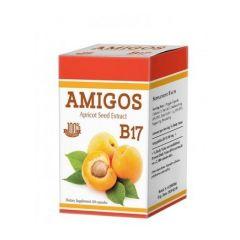 Amigos B17 Амигдалин при ракови заболявания 100 мг х 60 капсули Dr. Green