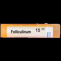 Boiron Folliculinum Фоликулинум 15 СН
