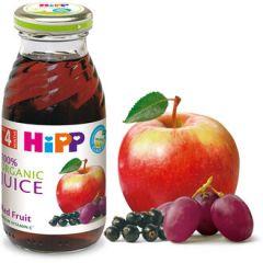 Hipp Био сок червени плодове 4М+ 200 мл