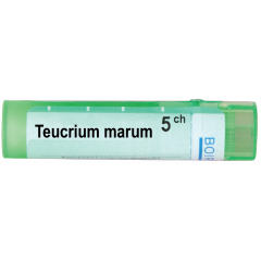 Boiron Teucrium marum Теукриум марум 5 СН