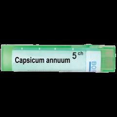 Boiron Capsicum annuum Капсикум анум 5 СН