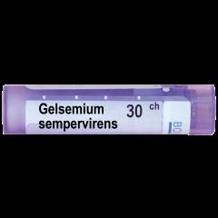 Boiron Gelsemium sempervirens Гелсемиум семпервиренс 30 СН