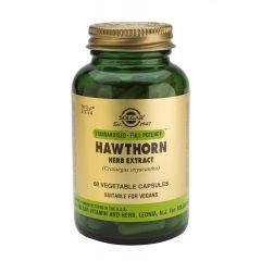 Solgar Hawrhorne Herb Extract Глог екстракт укрепва кръвоносните съдове х60 капсули