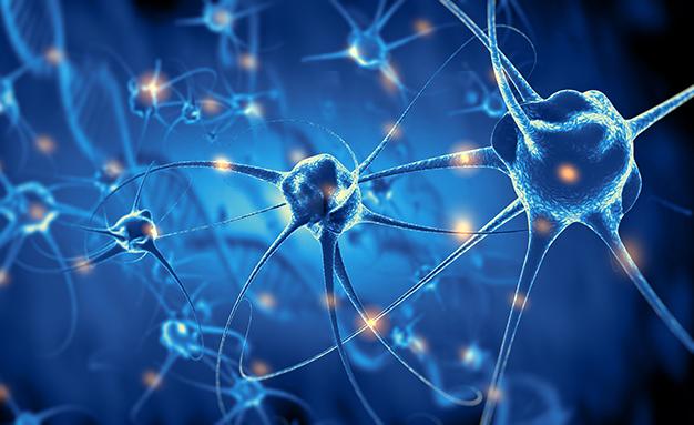Заболявания на нервната система и можем ли да се справим с тях