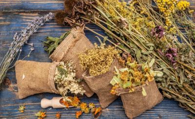 8 природни средства за повишаване на имунитета